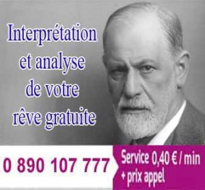 interprétation selon freud